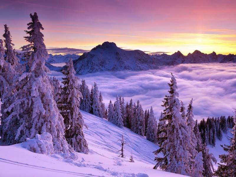 雪景011_20131207_Djilda Miteva