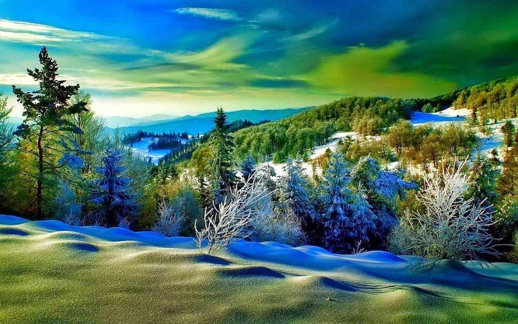 雪景009_20131206_dimka angelova