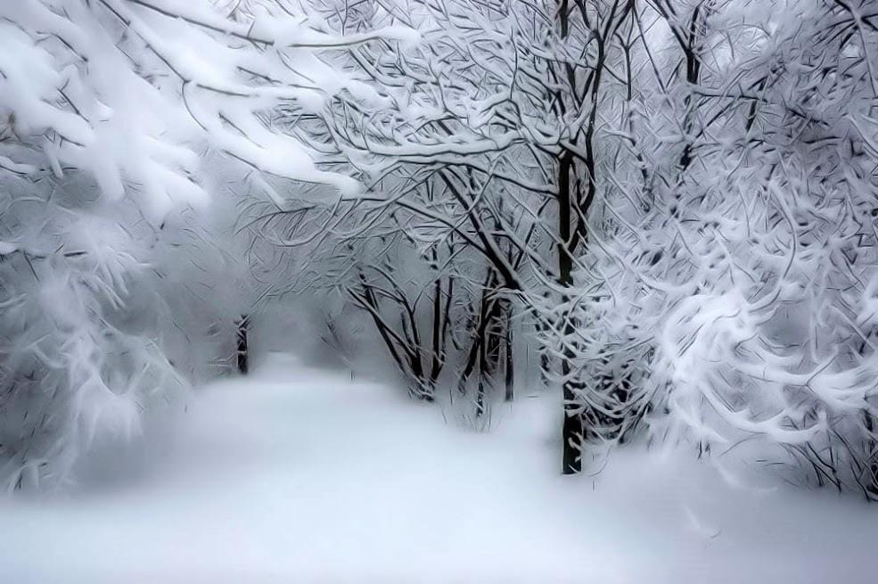 雪景003_20071128_Александр Белкин