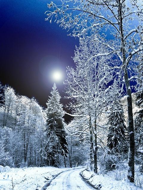 雪景004_20131205_Georgios Pasxalidis