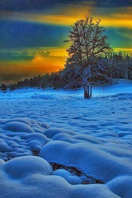 雪景002_20131201_dimka angelova