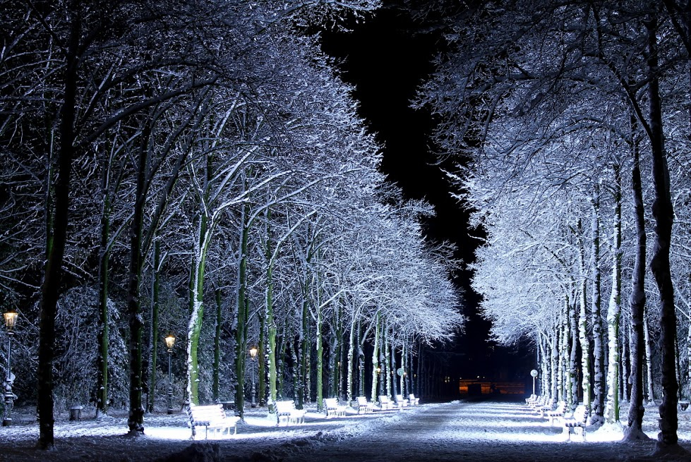 雪景005_20121208_John Michael Garcia