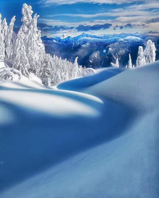 雪景007