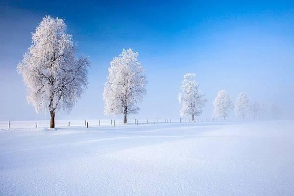 雪景015_20131212_arezoo tehrani