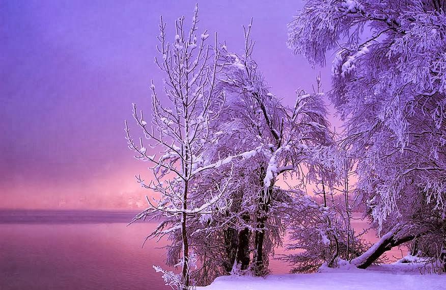 雪景016_20131212_dimka angelova