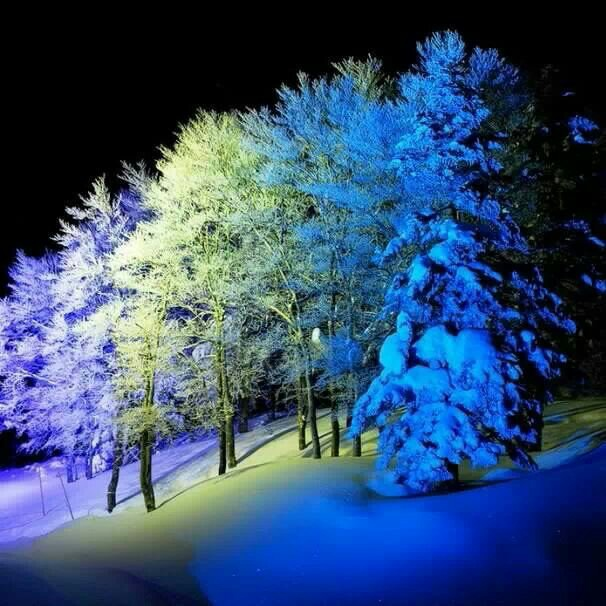 雪景017_20131212_yapa changrai