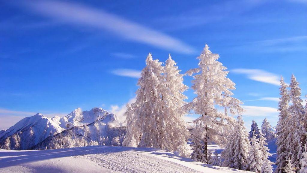 雪景019_20131212_József Vértes