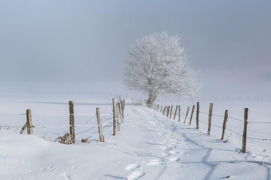 雪景018_20131208_Farhad N