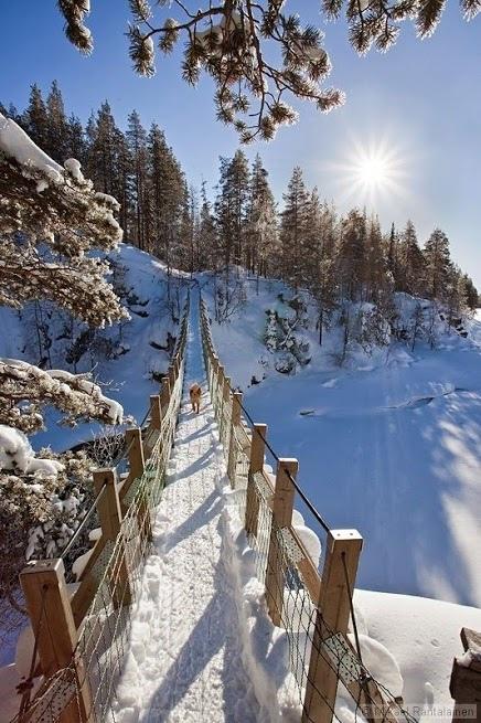 雪景020_20131213_Nadia Naz