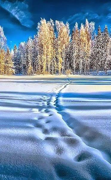 雪景027_20131220_Karolina Gombar