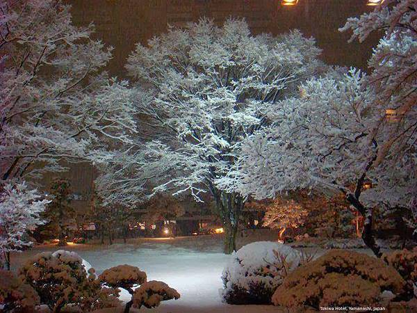 雪景025_20131218_Corné Sterk