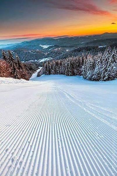 雪景033_20121224_tariq jamil