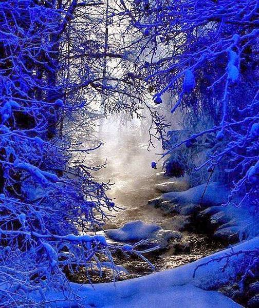 雪景035_20121224_dimka angelova
