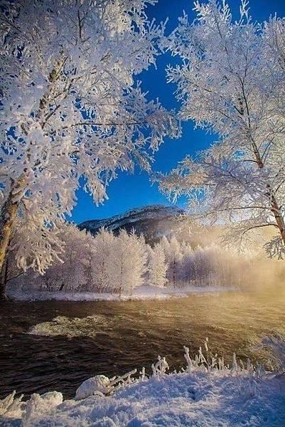 雪景036_20121227_Kyong sik Kim