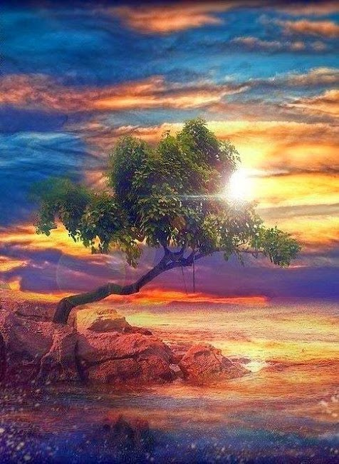奇樹125_20140114_Dao star