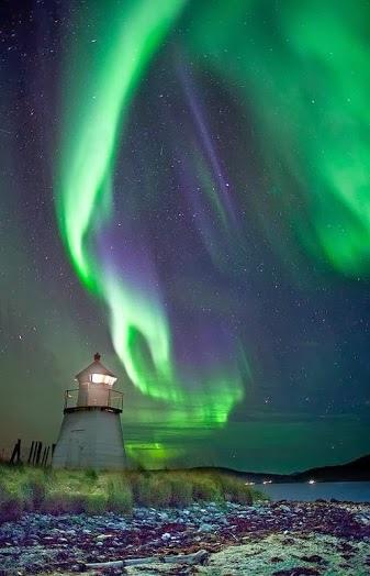 北極光011_20131106_Amazing Nature