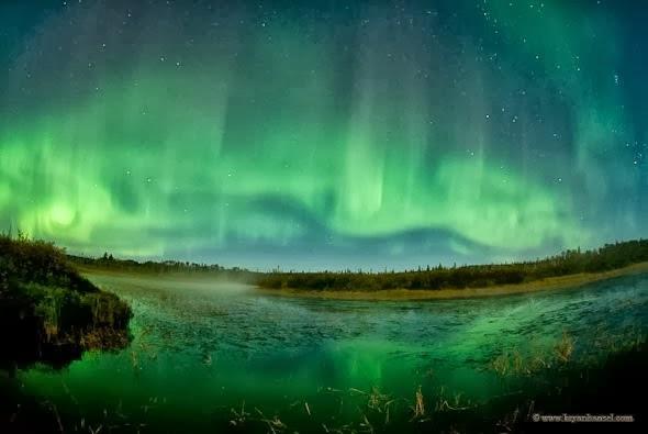 北極光016_20131116_Amazing Nature