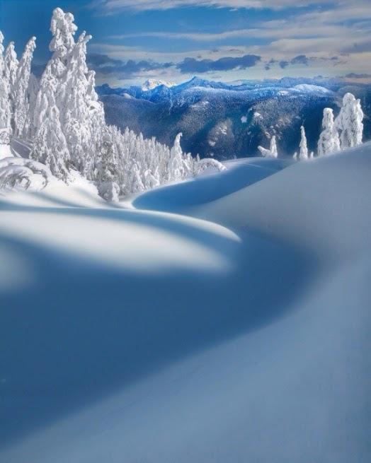 雪境2014-0004