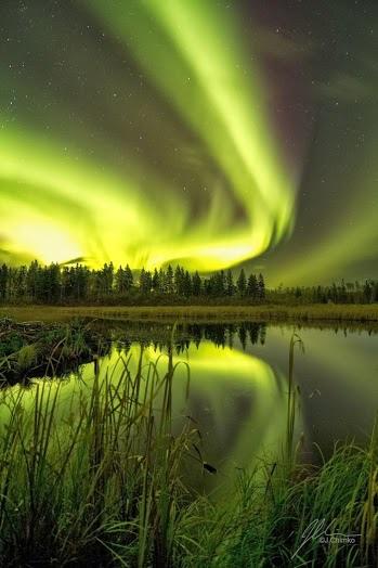 北極光019_20131119_Amazing Nature