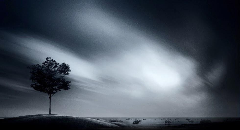 奇樹2014-0010