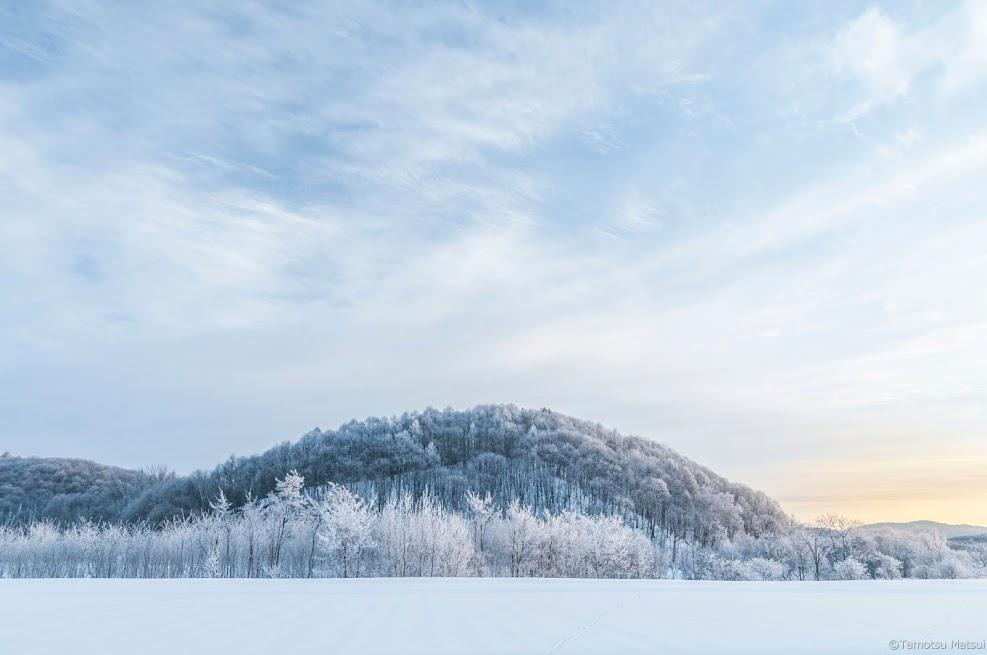 雪境2014-0005