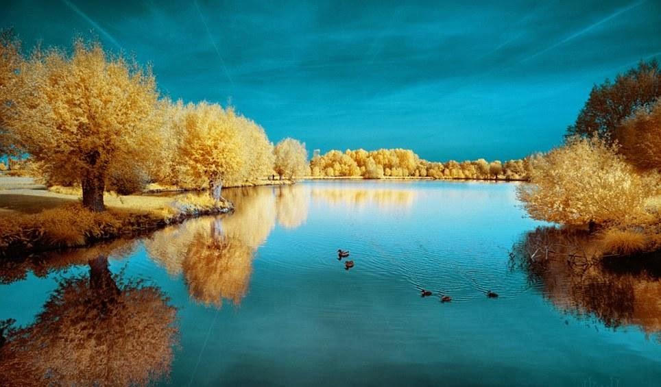 湖畔2014-0013