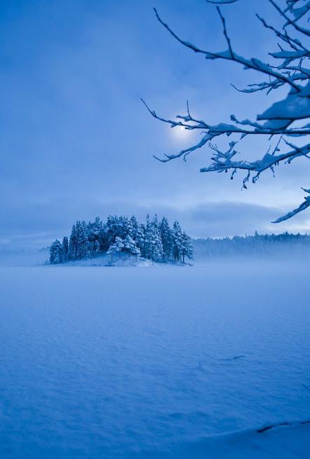 雪境2014-0011