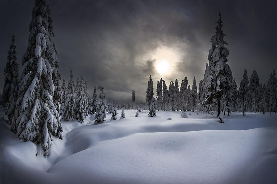 雪境2014-0010