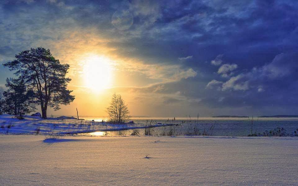 雪境2014-0012
