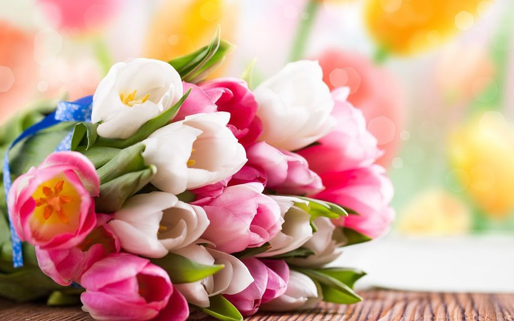 flower227_20140103_The Elixir of Life Team