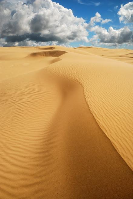 沙漠20140019