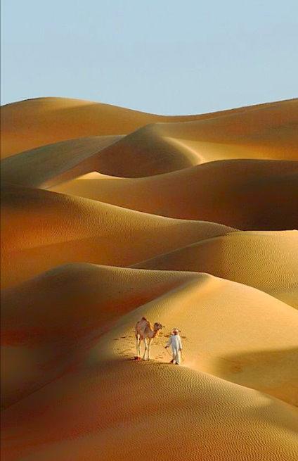 沙漠20140021
