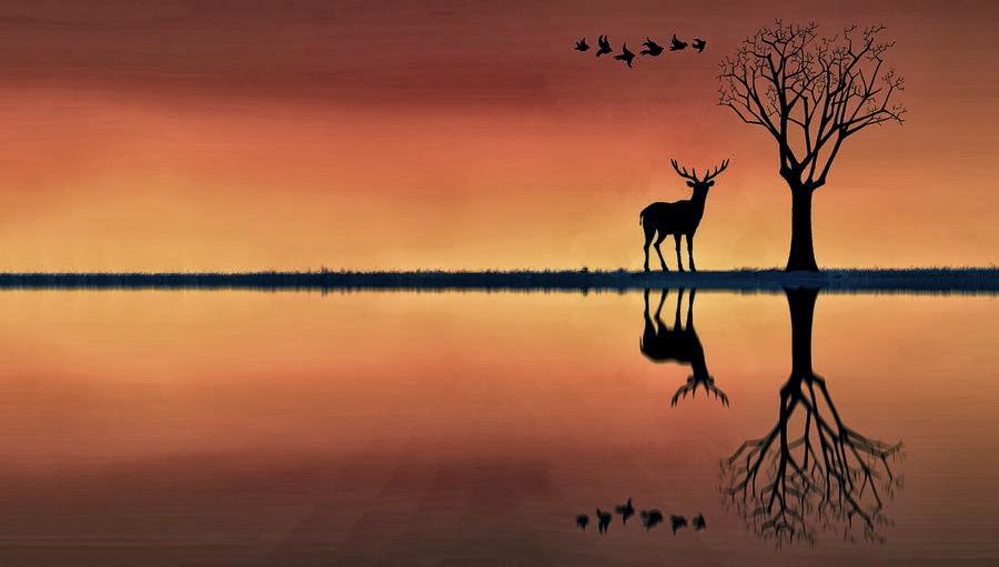 湖畔2014-0022