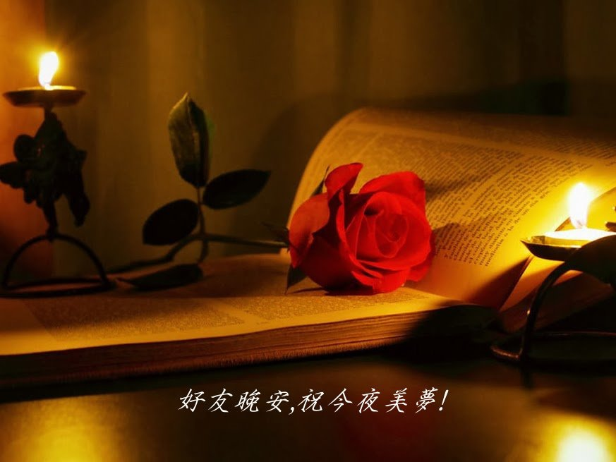 good-night049