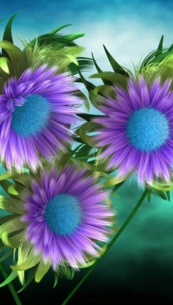 Flower-1416.jpg