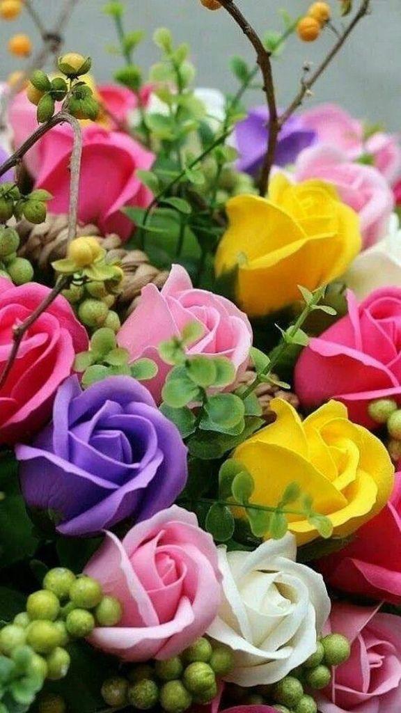 Flower-1630.jpg