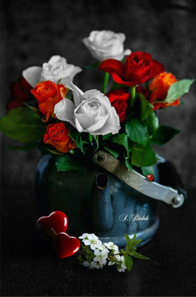 Flower-1858.jpg