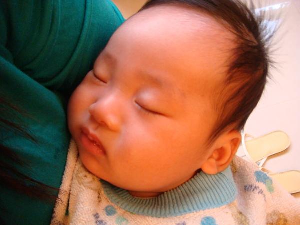 熟睡中的小米