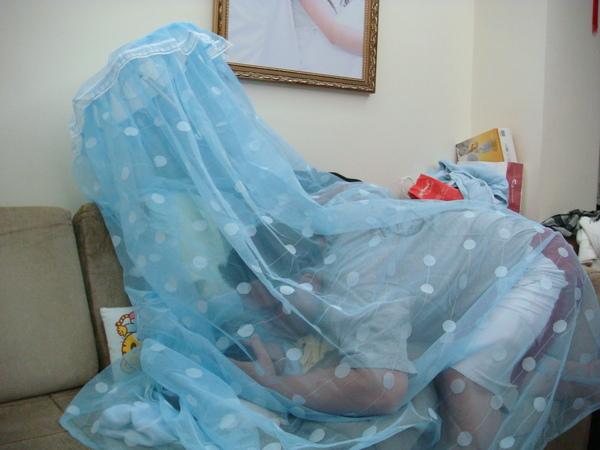 在蚊帳裡也要親