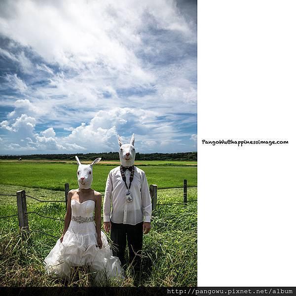 胖哥自助婚紗-婚禮紀錄-新娘秘書-3075.jpg