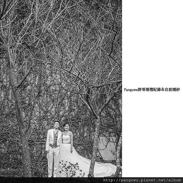 胖哥自助婚紗-婚禮紀錄-新娘秘書-1504.jpg