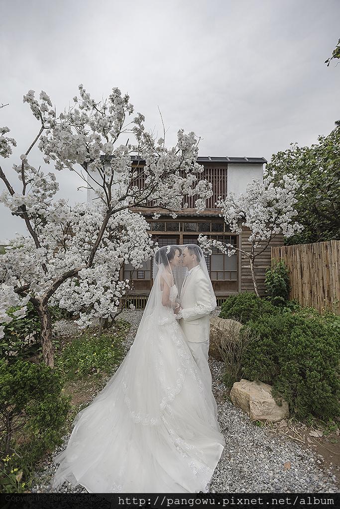 台北自助婚紗&婚禮紀錄