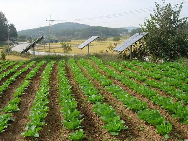 洪城樸門教育中心太陽能板