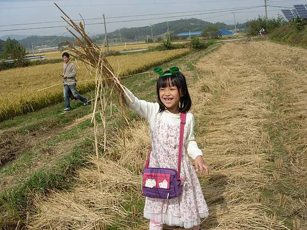 洪城樸門教育中心小孩玩稻草稈