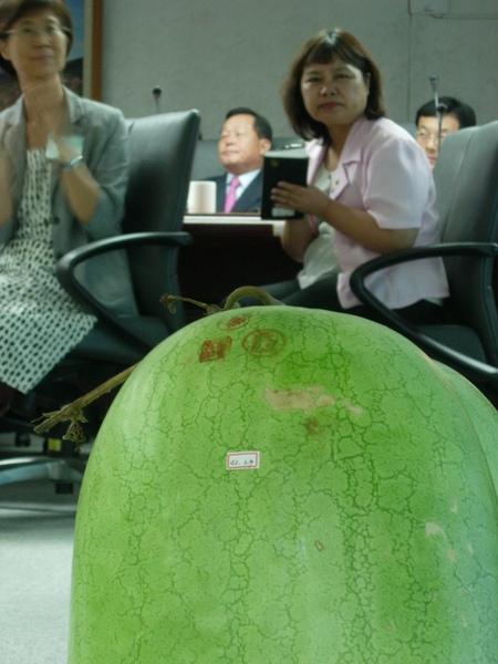 灣寶西瓜與劉政鴻參加區委會