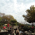 八卦山後花園#4.JPG