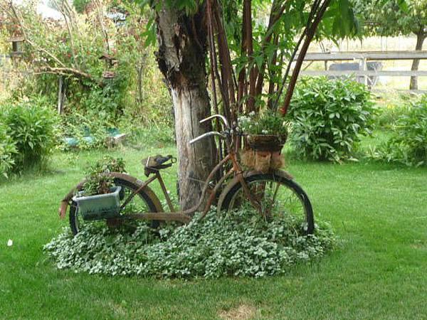 12-8499_015_Photo_12-8499_15