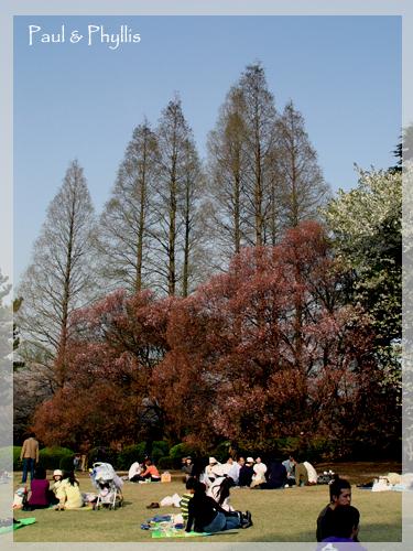 新宿御苑~~再忙也要來野餐