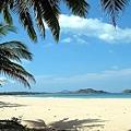 oceanview-pre.jpg