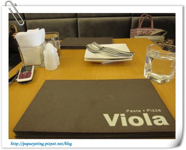 viola02.jpg